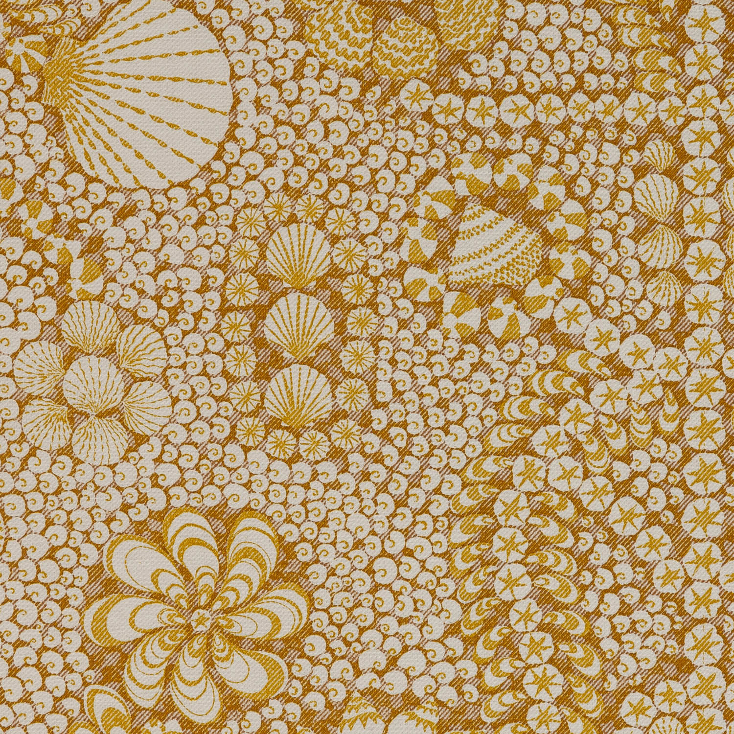 shel-002-yellow-shell-grotto-cotton-1